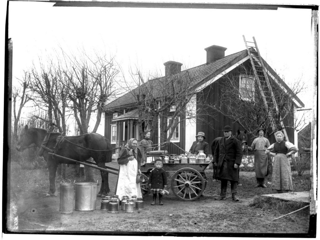A milk carriage and seven people in Tybble