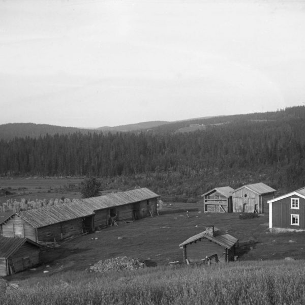 A farm with seven buildings