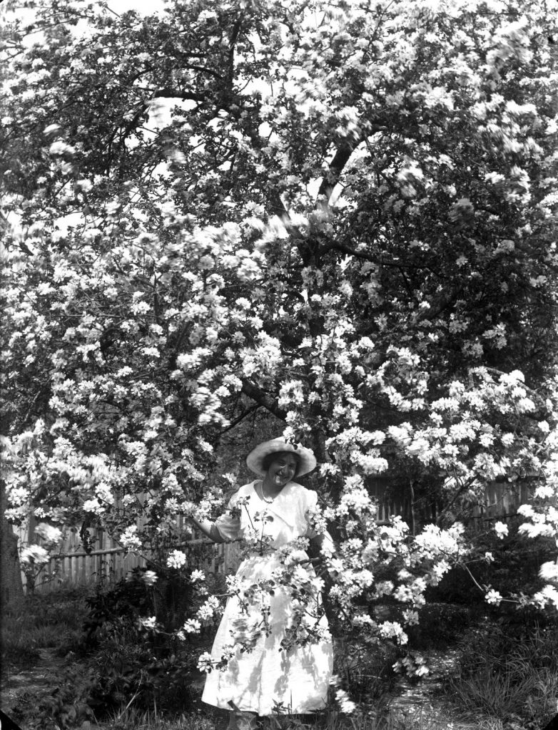 A woman under a tree in bloom